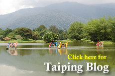 Click here for taiping blog